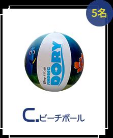 C:ビーチボール 5名